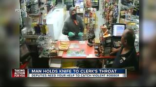 Detectives investigating string of violent robberies in Pinellas County - Video