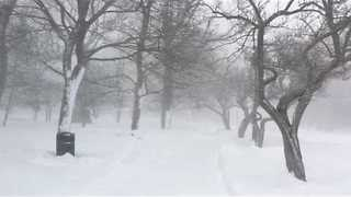 Blizzard Winds Blow Across New Brunswick - Video