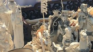$8.5 Million in Ivory Crushed in NYC's Central Park - Video