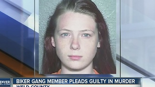 Biker gang member pleads guilty in murder - Video