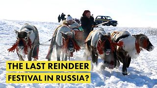 How climate change is wiping out a Russian tradition - Video