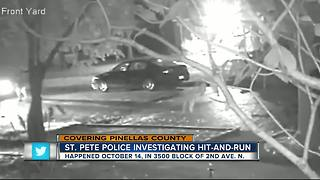 St Pete PD looking for hit-and-run suspect - Video