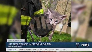 Fort Myers Fire Fighters rescues small kitten