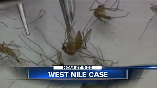 Dead Bird found in North Shore tests positive for West Nile virus in Milwaukee County - Video