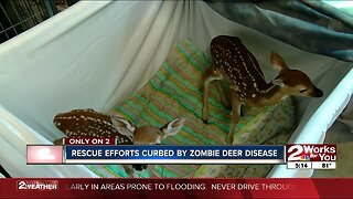 "Rescue efforts curbed by ""zombie deer disease"""