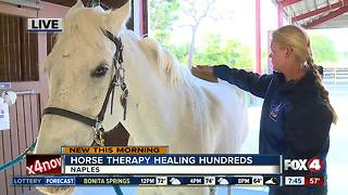 Horse therapy healing hundreds in Naples - 7:30am live report - Video