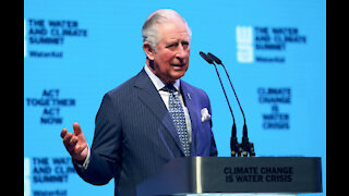 Prince Charles thinks it's time to 'rethink and reset' for green business