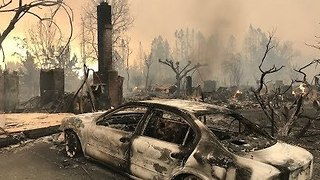 Coffey Park Neighborhood Devastated by Wildfire in California - Video