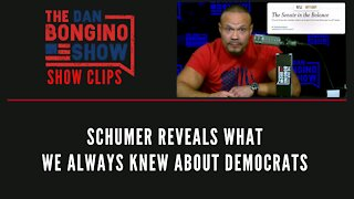 Schumer Reveals What We Always Knew About Democrats - Dan Bongino Show Clips