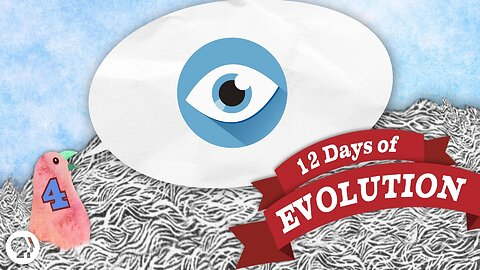 Can Evolution Make an Eye? - 12 Days of Evolution #4