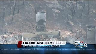 Study: Wildfire, flooding near Williams could cost $694M - Video