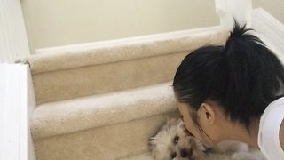 Not puppy love – Dog pushes owner away when she tries to kiss him - Video