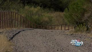 Two new rabies cases in Cochise County - Video