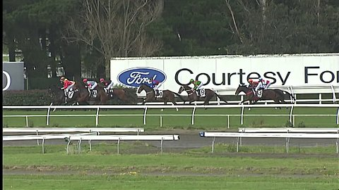 Jockey Remounts After Being Knocked From Horse During Fall, Then Wins Race