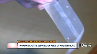 Las Vegas woman battling mighty bug problem - Video