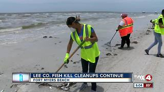 Crews continue dead fish clean-up on beaches - Video