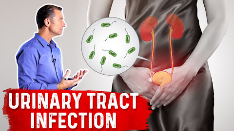 Top Natural Remedies for a UTI (Urinary Tract Infection)