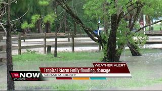 Tropical Storm Emily flooding, damage in Sarasota County