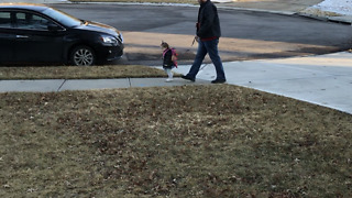 Dad walks his daughter on a leash - Video