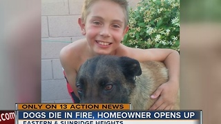 Two dogs die in Henderson house fire - Video