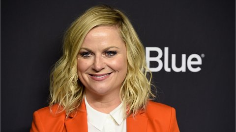 Amy Poehler Addresses Parks And Rec Reboot Following Cast Reunion