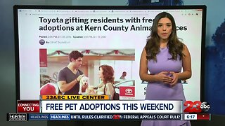Toyota covering pet adoption fees