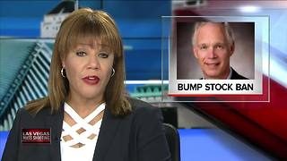 Sen. Johnson: 'I have no problem banning' bump stocks after Vegas mass shooting - Video
