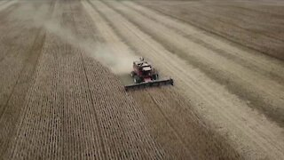 Ohio soybean farmers see price for crops, farming double in 1 year
