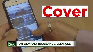 Insurance for just about anything... in a snap - Video
