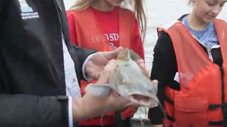 Thomas More College Biology Field Station studies health of Ohio River - Video