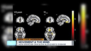 New study shows major link between exercise and brain health