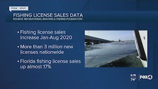 Florida fishing license sales are up