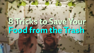 8 Tricks to Save Your Food from the Trash