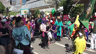 Colorful Counter-Protesters March Against Far-Right 'Patriot Prayer' Rally in Portland