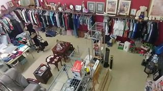 Las Vegas animal rescue group's new thrift shop burglarized - FB - Video