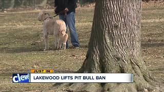Lakewood lifts put bull ban - Video