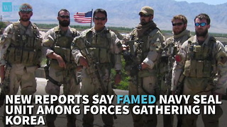 New Reports Say Famed Navy SEAL Unit Among Forces Gathering In Korea - Video