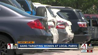 Felony Lane Gang targeting women at local parks - Video
