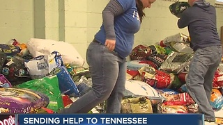 IndyHumane sending help to Seviere County Humane Society - Video