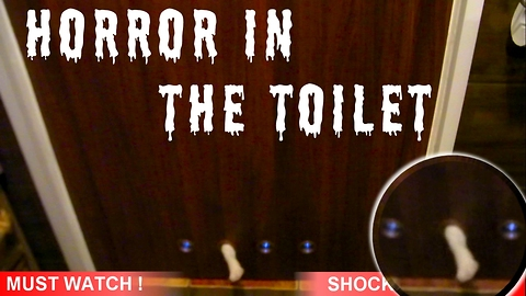Horror in the toilet