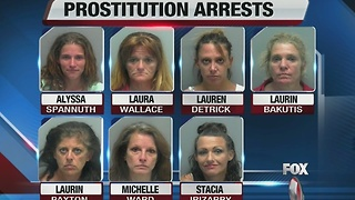 Lee County Prostitution Bust - Video