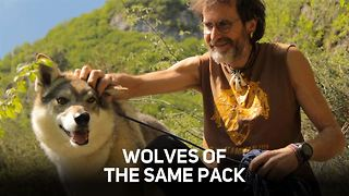 Living with a wolf: Who's learning from who?