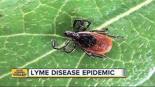 Doctors predict Lyme Disease epidemic; Tampa Bay possible hotbed of debilitating tick-born disease - Video