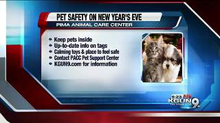 Pet-safety reminders for New Years Eve - Video