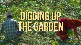 Digging Up The Garden - Video