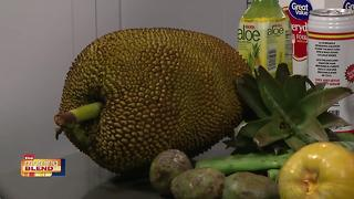 Taste Of Lee Tropical Fruit Fair - Video