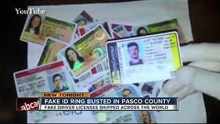 Fake ID ring busted in Pasco County