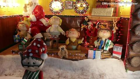 Munchkin the Teddy Bear visits world's largest holiday-themed park