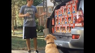 Man Lets His Dog Do the Shopping With Unfortunate Results - Video