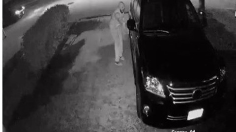 Security camera captures footage of brazen thieves